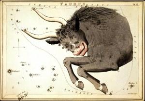 constellation_Taurus